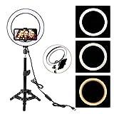 Aro de Luz, 25cm Anillo de luz LED Selfie con Trípode de 45cm y Soporte para Teléfono, 3 Modos de Luz y 9 Brillos Regulables, para Youtube TIK Tok Instagram Fotografía Maquillaje Vlog Vídeo Live
